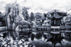 tea_garden.jpg